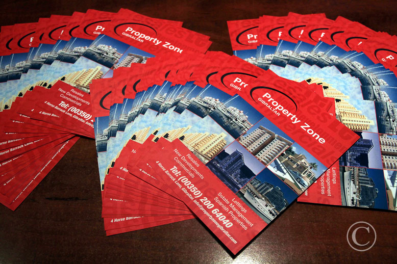 Property Zone leaflets